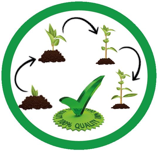 Bio - Fertilizantes